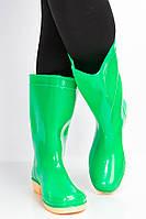 Сапоги женские 160P32 (Зеленый), фото 1