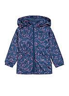 Куртка для девочки демисезонная синяя, фото 1