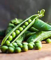 Горох овощной Вальверде 100 000 сем.Сингента (Syngenta)