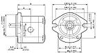 Шестеренный насос Galtech 2SP 260, фото 4