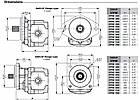 Шестеренный насос с чугунным корпусом Galtech 3TPW 470, фото 7