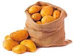 Типы картофелекопалок