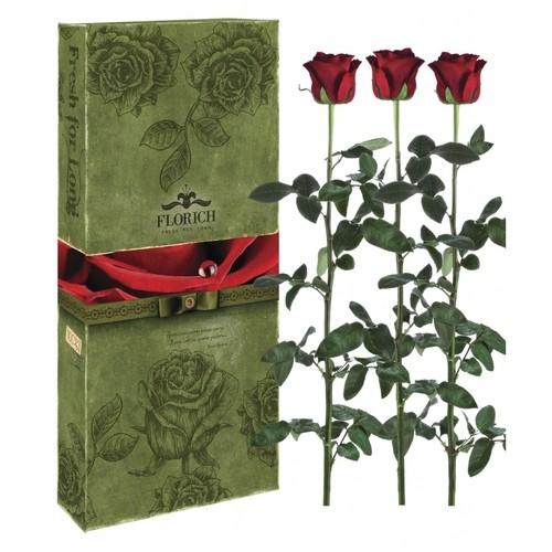 Три долгосвежие розы FLORICH в подарочной упаковке. Заказать и купить цветы можно с доставкой.