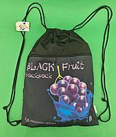 Рюкзак TM Profiplan Frutti  violet (1 шт)
