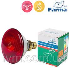 Лампа инфракрасная PAR 175Вт красная, для обогрева животных и птиц FARMA (Польша) ОРИГИНАЛ !