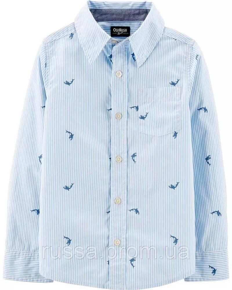 Стильная поплиновая рубашка Киты ОшКош для мальчика