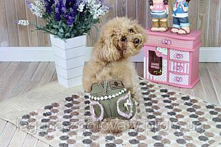 Джинсы для собак МОН ШЕР, цвет - хаки/розовый, размер L, уценка