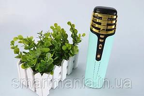 Беспроводной микрофон для караоке WS-838