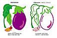 Овочі. Подивись і розфарбуй, фото 2