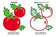 Овочі. Подивись і розфарбуй, фото 4