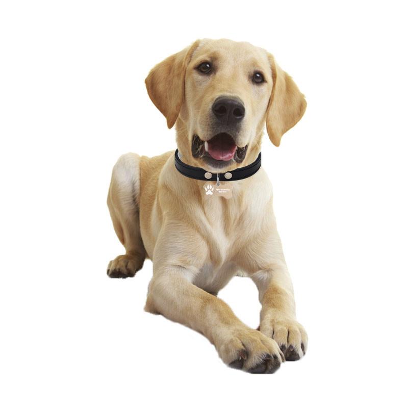Медальон-адресник на ошейник для домашних животных Manulife Кость Gold 5 * 2,8 * 0,2 Услуга гравировки