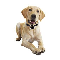 Медальйон-адресник на нашийник для домашніх тварин Manulife Кістка Black 5 * 2,8 * 0,2
