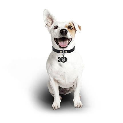 Медальон-адресник на ошейник для домашних животных Manulife Рыба Black 3,8 * 2,5 * 0,2 Услуга гравировки, фото 2