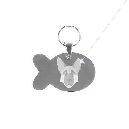 Медальон-адресник на ошейник для домашних животных Manulife Рыба Silver 3,8 * 2,5 * 0,18 Услуга гравировки, фото 2