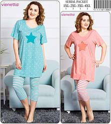 Комплект летний  женский футболка короткий рукав+бриджи, х/б, VS,  (размер 3XL)