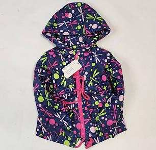 Детская куртка ветровка для девочки синяя стрекоза 4-5 года, фото 2