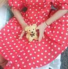 Сукня червоне в горошок для ляльки Блайз, Айсі, фото 3