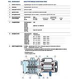 Центробежный многоступенчатые насос Pedrollo 4CRm 80, фото 4