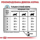 Royal Canin Hypoallergenic DR25 Feline сухой корм для кошек (Роял Канин Гипоаллергенный Фелин) 2,5 кг, фото 2