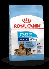 Royal Canin Maxi Starter (Роял Канин Макси Стартер) 1 кг