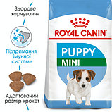 Royal Canin (Роял Канин) Mini PUPPY щенки от 2 до 10 месяцев 2 кг, фото 3