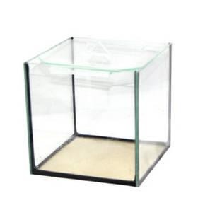 Креветочник 9  151515см стекл. крышка 3л4мм