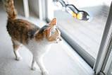 Игрушка для кота Track зигзаг 588,5 СТ00692, фото 4