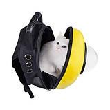 Рюкзак иллюминатор пластик 32х42х29см Желтый, фото 2