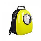 Рюкзак иллюминатор пластик 32х42х29см Желтый, фото 3