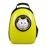 Рюкзак иллюминатор пластик 32х42х29см Желтый, фото 4