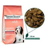 Arden Grange (Арден Грендж) для собак лососьрис 2 кг, фото 2