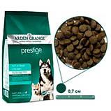 Arden Grange (Арден Грендж) для собак Престиж 2кг, фото 2