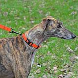 Поводок ACTIVE для собак водоотталкивающий с защитным полимерным покрытием Оранжевый 16мм122см, фото 4