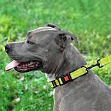 Поводок ACTIVE для собак со светоотражением нейлоновый Салатовый 16мм152см, фото 4