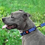 Поводок ACTIVE для собак со светоотражением нейлоновый Синий 10мм152см, фото 4