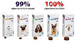 Таблетка Бравекто (Bravecto) для собак 40 - 56 кг, фото 2