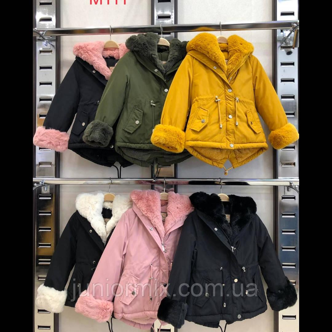 Дитячі зимові куртки для дівчаток оптом NATURE