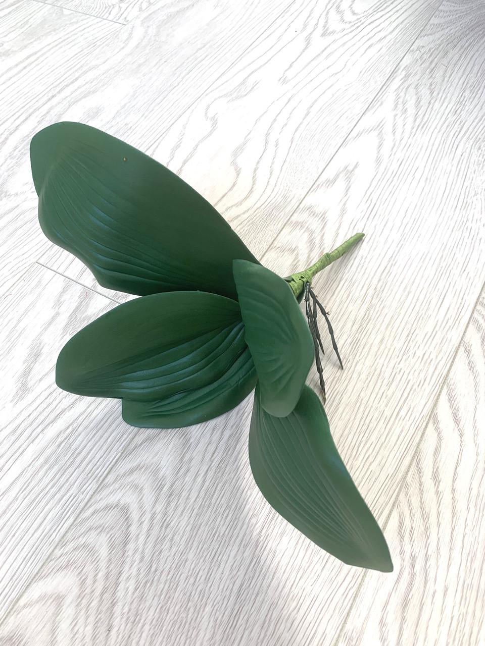 Декоративный лист орхидеи с корнем из латекса ( Maxi 33 см )