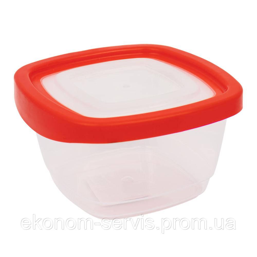 Контейнер пищевой квадратный с крышкой KEEPER BOX 0,55 л