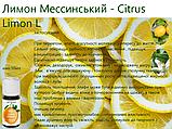 Ефірна олія Лимон, натуральна, Швейцарія / Lemon Messina, фото 3