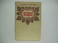 Кощеев А.К., Смирняков Ю.И. Лесные ягоды (б/у)., фото 1