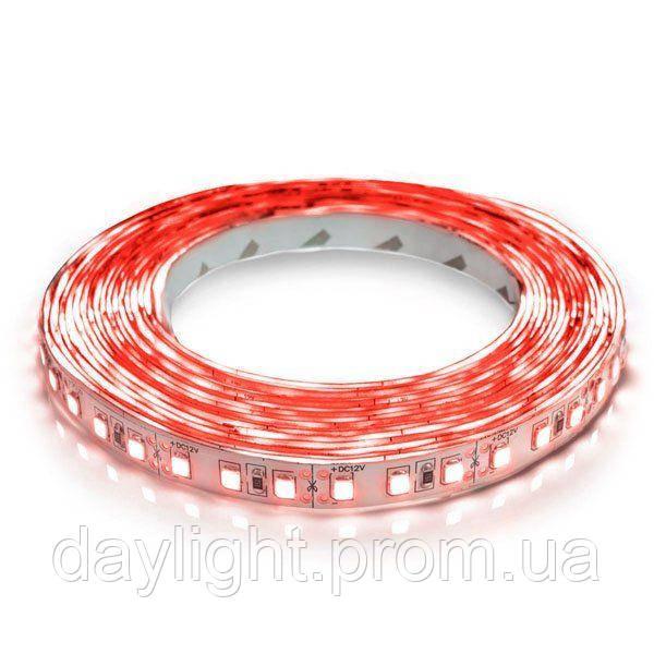 Светодиодная led лента 5 метров красный свет (9.6вт/м 120д 3528) ГАРАНТИЯ 12 мес.