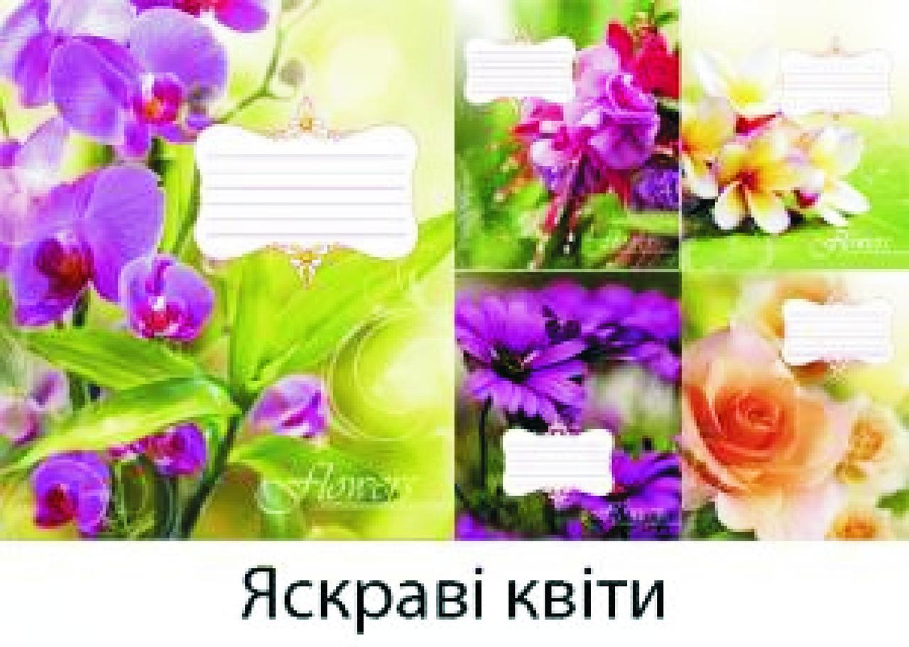 Набор тетрадей ученических 48л. Клетка. (10шт.) (Leader) 959059-5