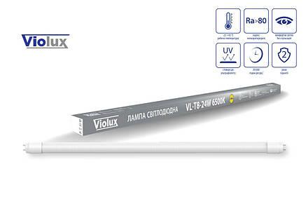 Led лампа T-8 24W 2160Lm 6500K 150 см. VL-T8-24W Violux, фото 2