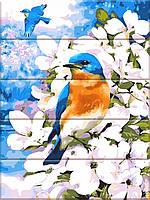 """Картина за номерами на дереві """"Яскрава птах"""" 30*40 см"""