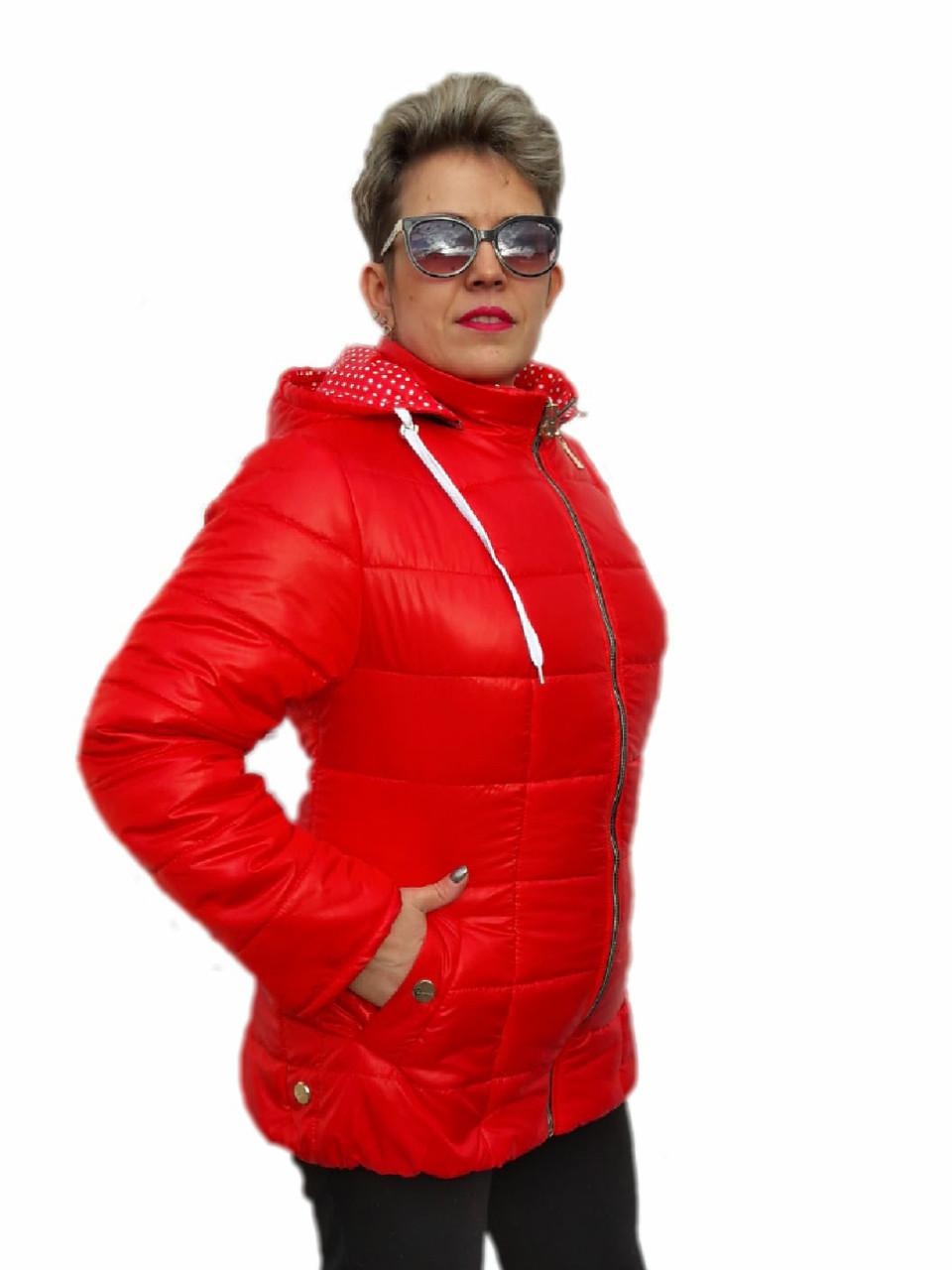 Куртка женская демисезонная (62,64,66 р-ры)