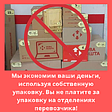 """Амарант сорт """"Харьковский-1"""" семена 20 грамм (около 10 000 штук), фото 7"""