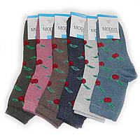 Женские носки Modus - 8,00 грн./пара (вишня), фото 1