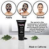 Маска від чорних точок для очищення пір з деревним вугіллям California Charcoal Face Mask, фото 7