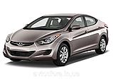 Hyundai Elantra от 2011- Амортизатор задний газ-масло / амортизатор задний хендай элантра, фото 3